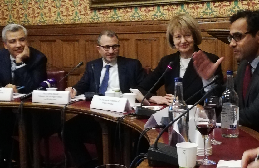 Baroness Nicholson Chairing Meeting